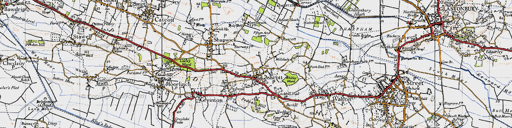 Old map of Ashcott in 1946