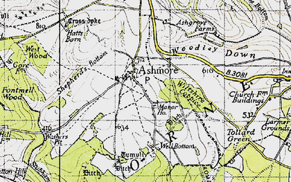 Old map of Ashmore Down in 1940