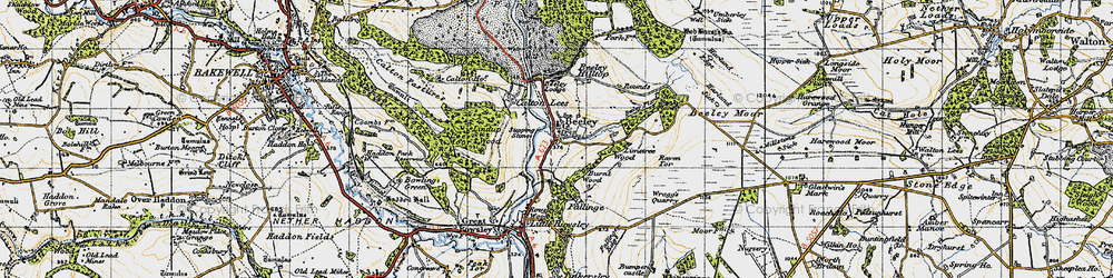 Old map of Limetree Wood in 1947