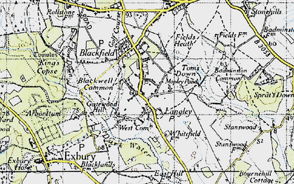 Old map of Badminston Common in 1945