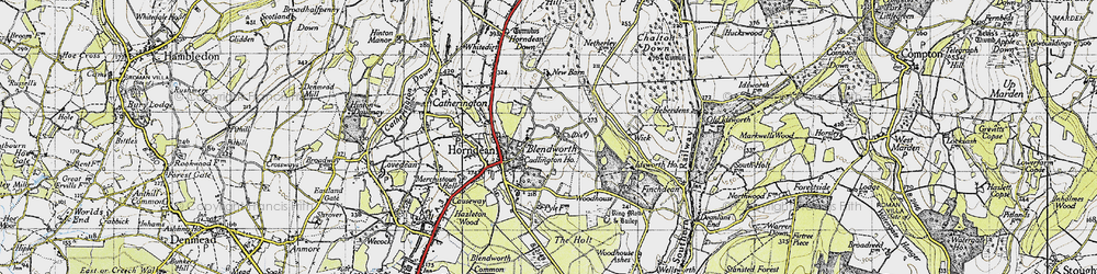 Old map of Blendworth in 1945