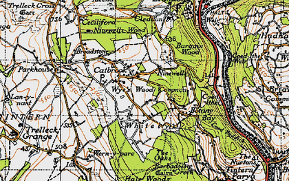 Old map of Wyes Wood Common in 1946