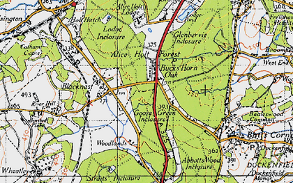 Old map of Alice Holt Forest in 1940