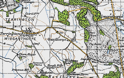 Old map of Thurtle Wood in 1947