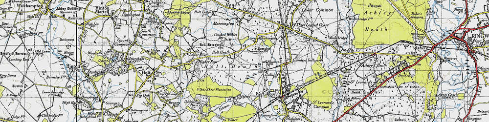 Old map of White Sheet Plantation in 1940