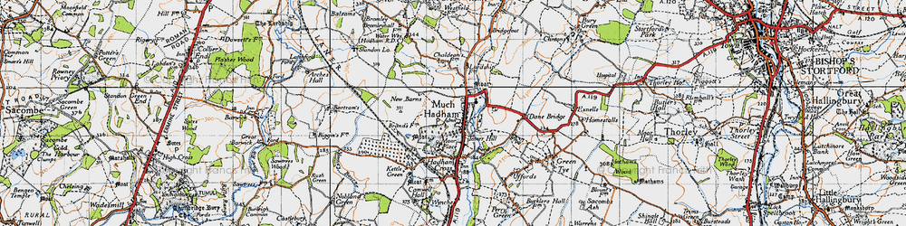 Old map of Much Hadham in 1946