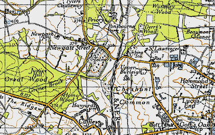 Old map of Wormley Wood in 1946