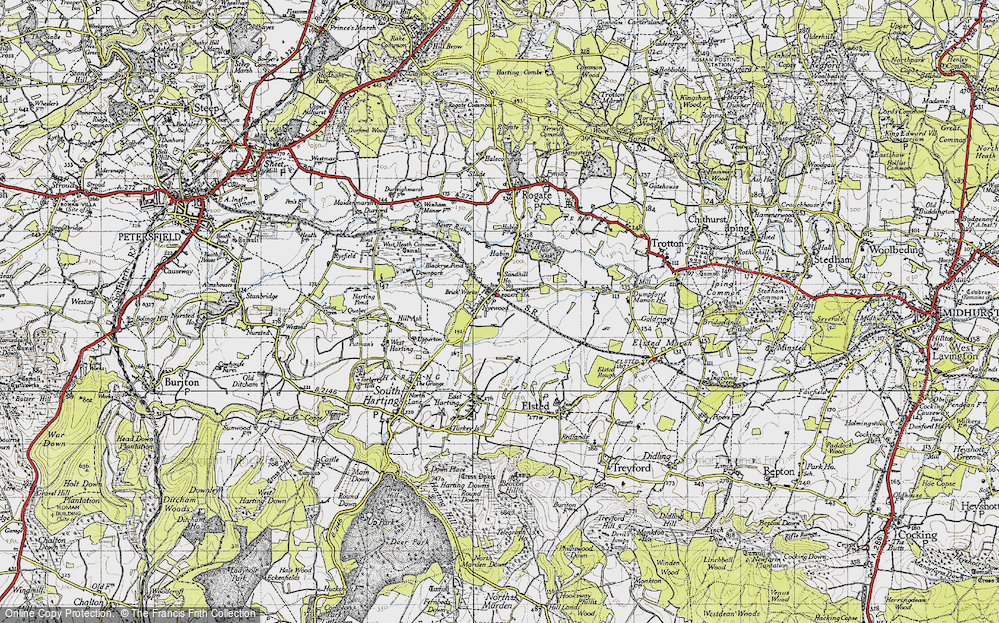 Old Map of Nyewood, 1945 in 1945