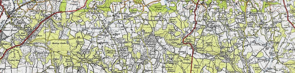 Old map of Woolbeding Common in 1940