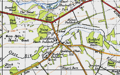 Old map of Young Plantn in 1946