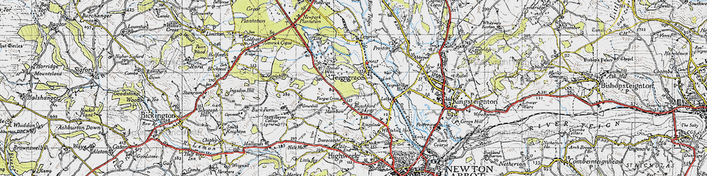 Old map of Teigngrace in 1946