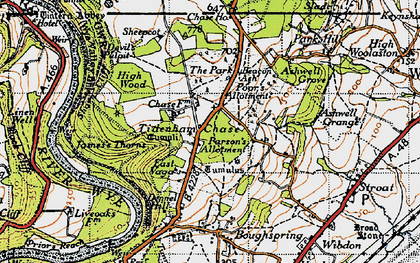 Old map of Tidenham Chase in 1946