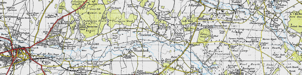 Old map of Woodsford Lower Dairy in 1945