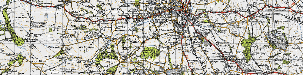 Old map of Widdowson Spring Wood in 1947