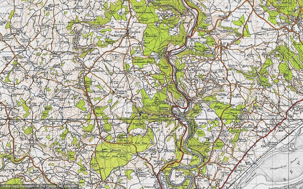 Whitelye, 1946