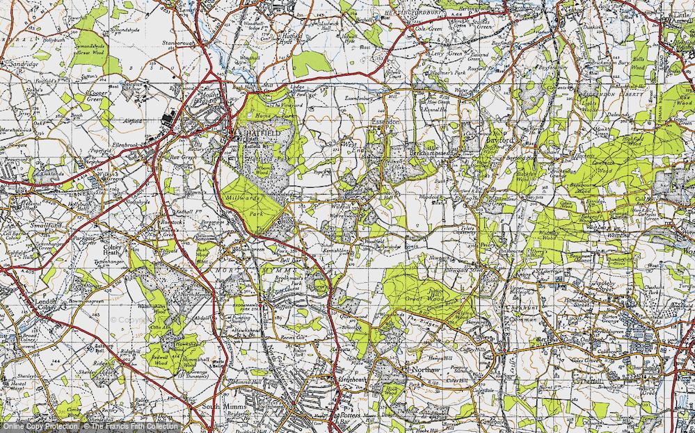 Wildhill, 1946