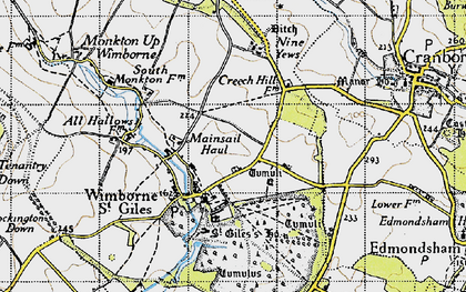 Old map of Wimborne St Giles in 1940