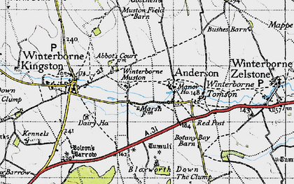 Old map of Winterborne Muston in 1945
