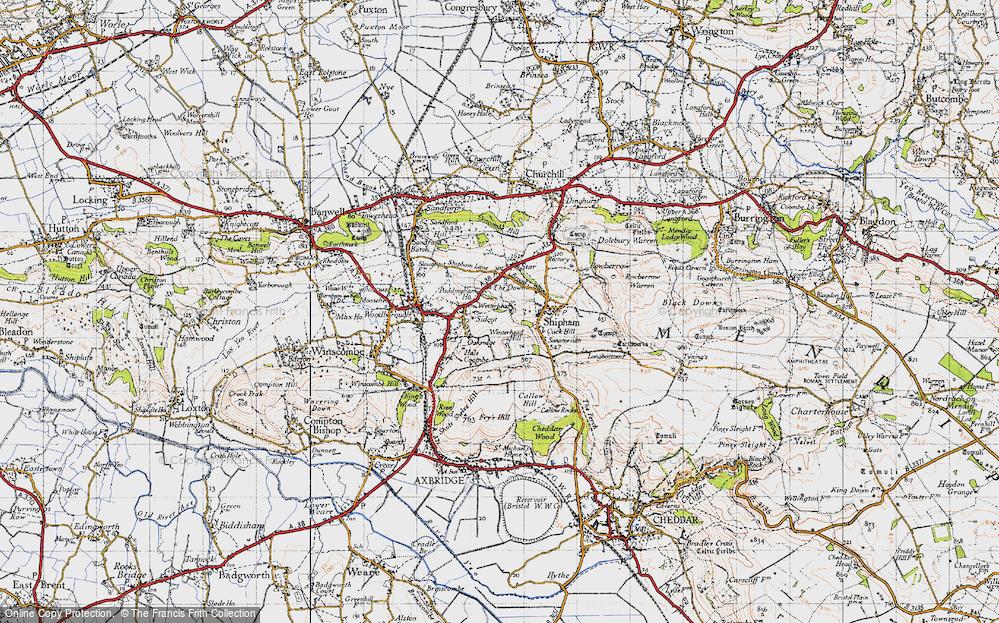 Winterhead, 1946