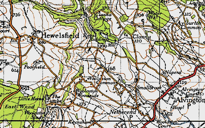 Old map of Woolaston Common in 1946