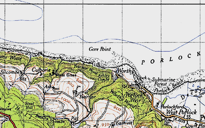 Old map of Worthy Wood in 1946