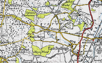 Old map of Hayes Barton in 1946