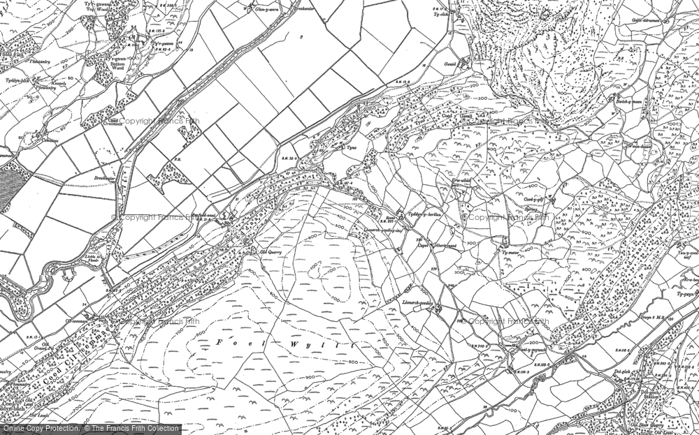 Old Map of Abertrinant, 1900 in 1900