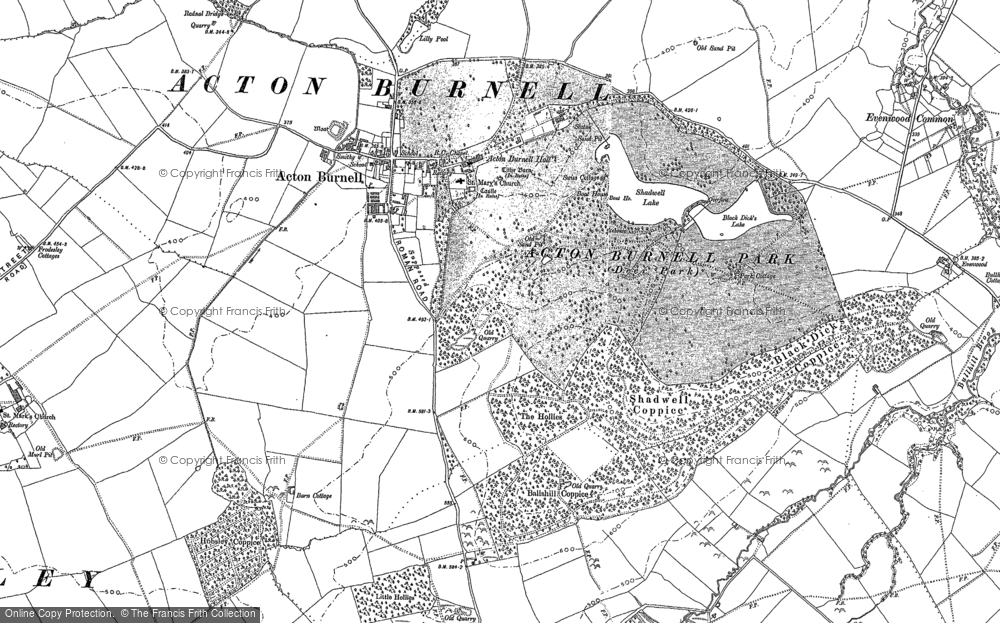 Old Map of Acton Burnell, 1882 in 1882