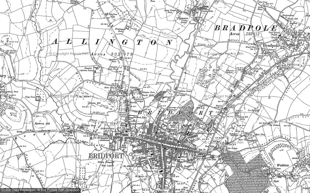 Old Map of Allington, 1901 in 1901