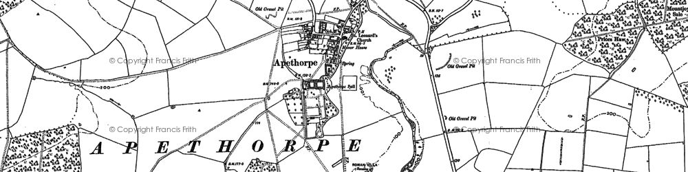 Old map of Tomlin Wood in 1885