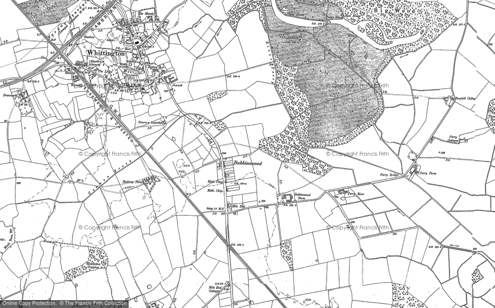 Old Map of Babbinswood, 1874 - 1875 in 1874
