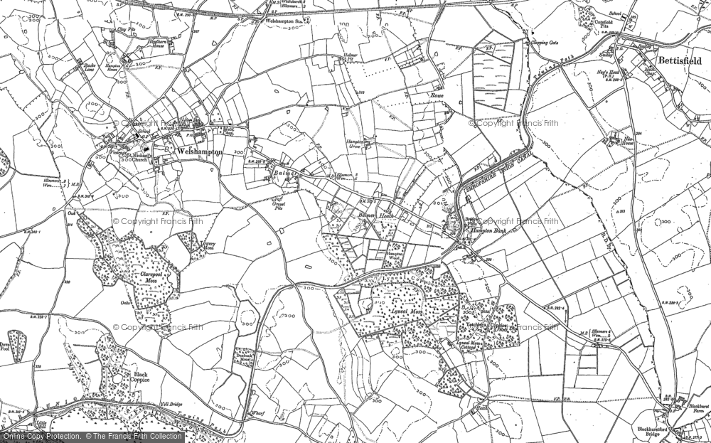 Old Map of Balmer Heath, 1874 - 1899 in 1874