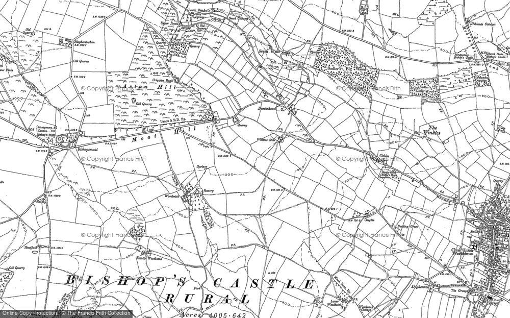 Old Map of Bankshead, 1882 - 1901 in 1882
