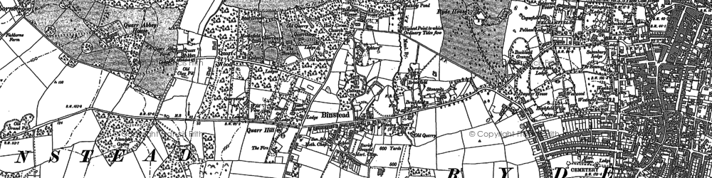 Old map of Binstead in 1896