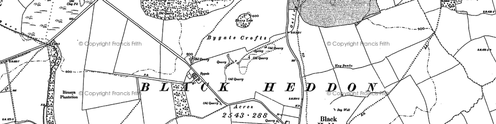 Old map of Bankfoot in 1895