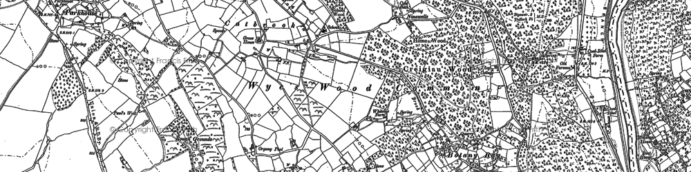 Old map of Wyes Wood Common in 1900