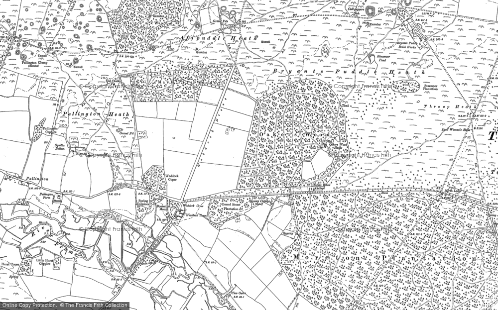 Old Map of Historic Map covering Affpuddle Heath in 1886