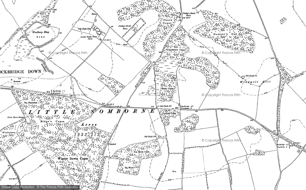 Old Map of Historic Map covering Woolbury in 1894
