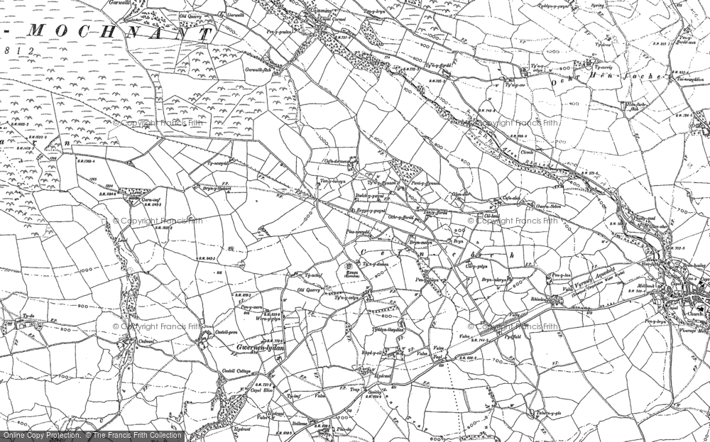 Old Map of Historic Map covering Afon Rhaeadr in 1900