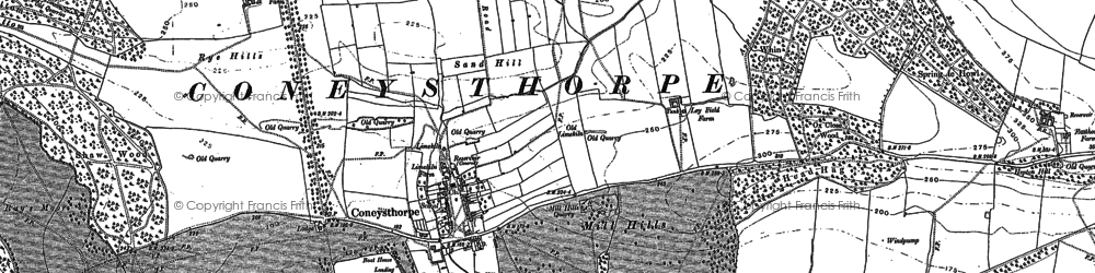 Old map of Thurtle Wood in 1889