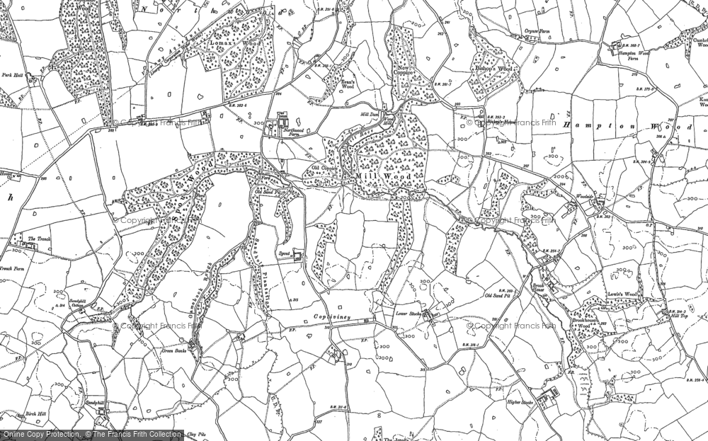 Old Map of Historic Map covering Lionlane Wood in 1898