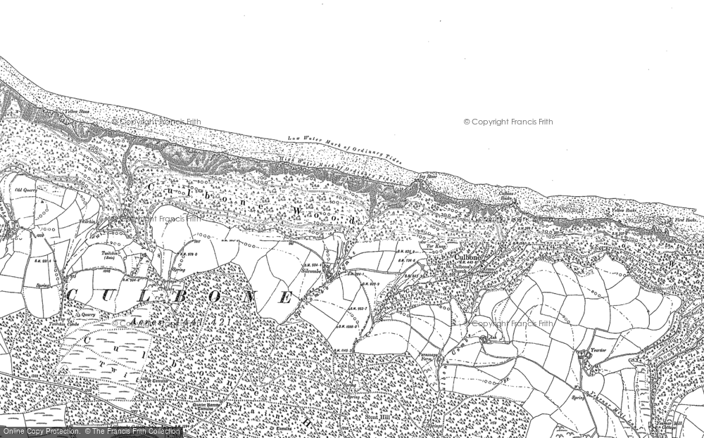 Old Map of Historic Map covering Yearnor Wood in 1902