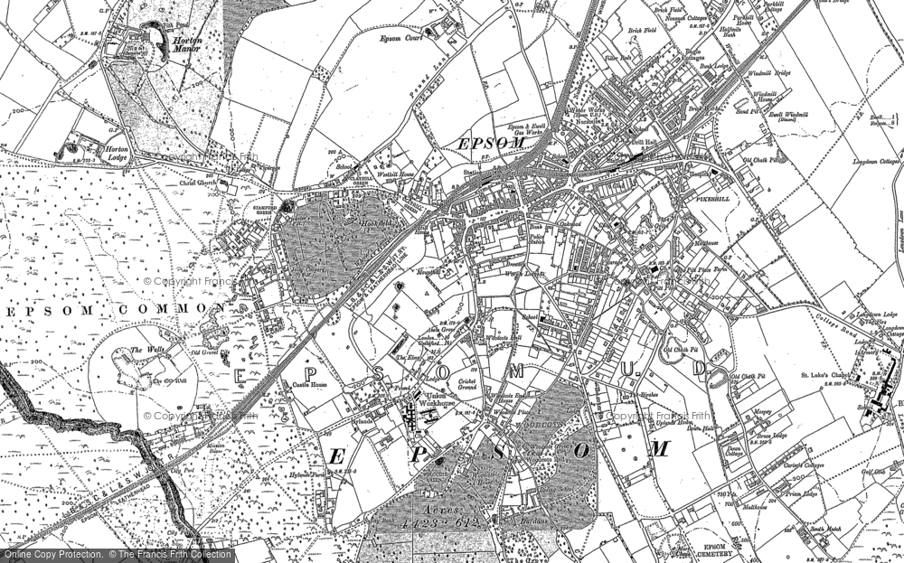 Old Map of Historic Map covering Woodcote Stud in 1894