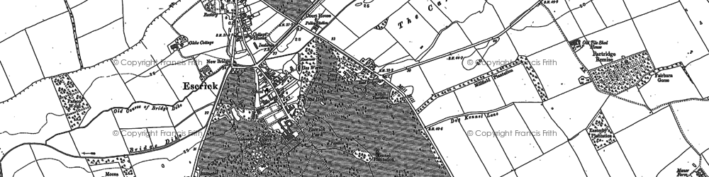 Old map of Escrick in 1889