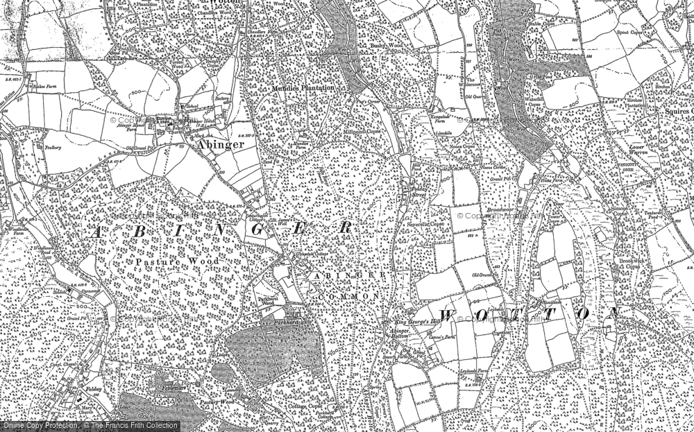 Old Map of Historic Map covering Abinger Bottom in 1895