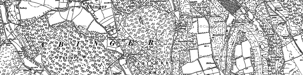 Old map of Abinger Bottom in 1895