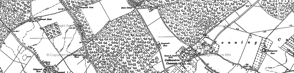 Old map of Withy Copse in 1897