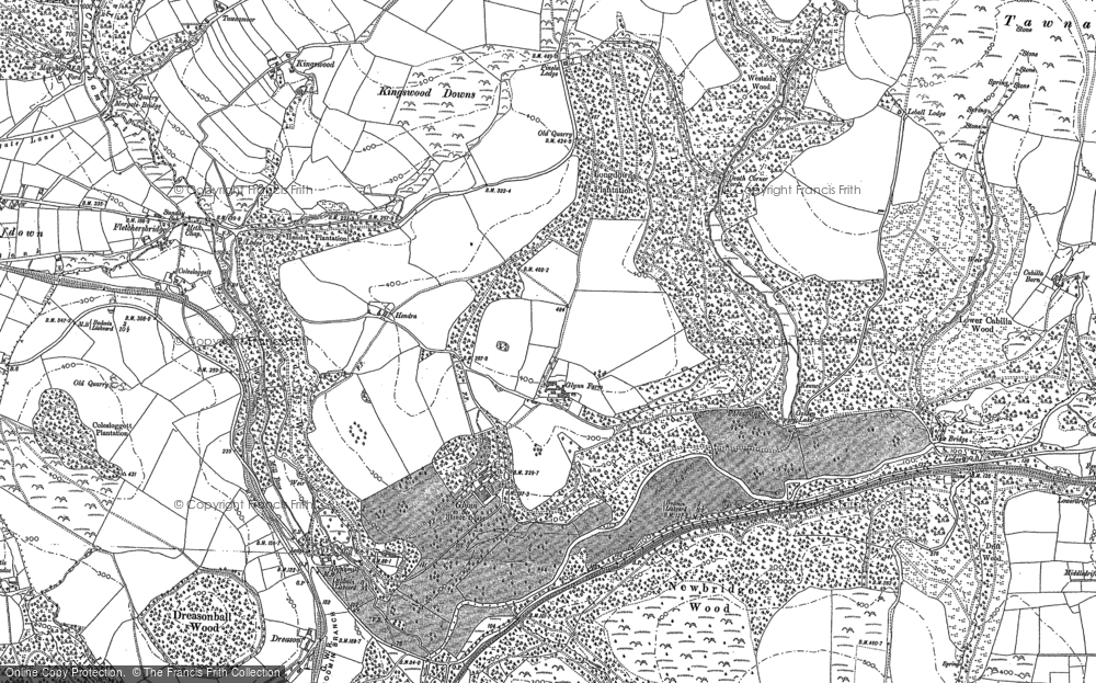 Old Map of Historic Map covering Laneskin Wood in 1881