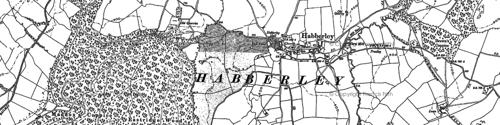 Old map of Lees Coppice in 1881