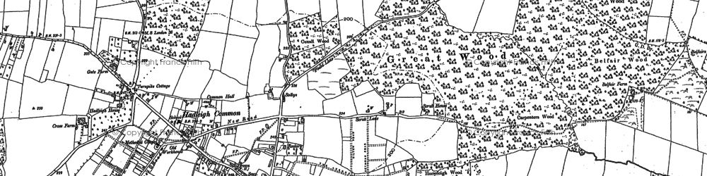 Old map of Hadleigh in 1895